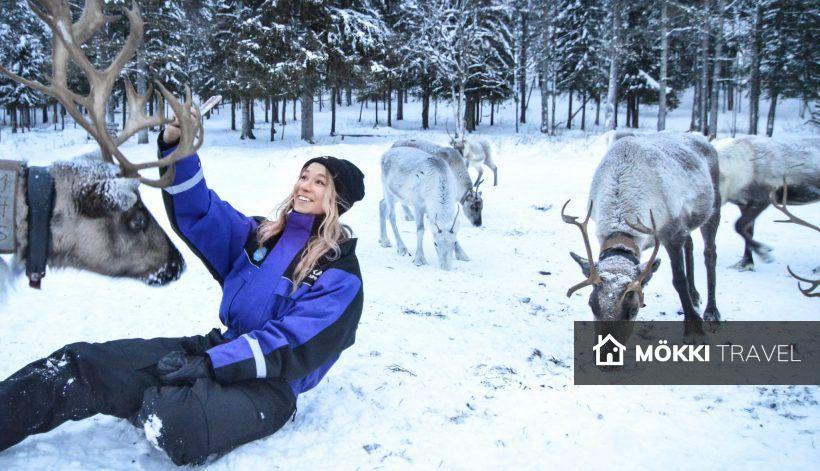 Vrouw bij rendieren in Lapland